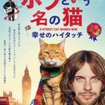 映画「ボブという名の猫 幸せのハイタッチ」の感想・ネタバレ(73点)実話だけどそんなに面白い?